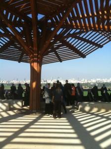 At the Ariel Sharon Park