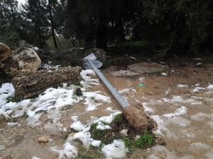 Winter damage in A-Tur