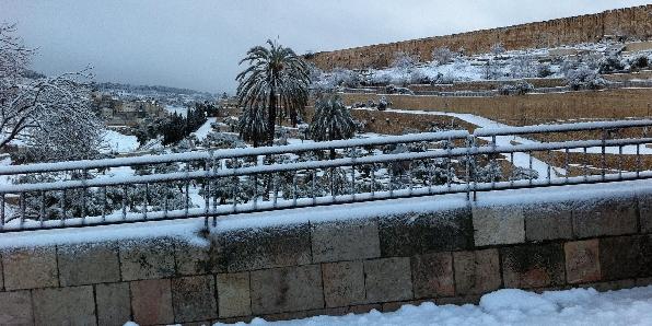 Snow 2 596X298